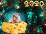Поздравляем с Новым 2020-м годом!